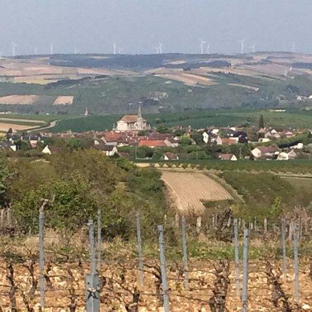 Coulanges-la-Vineuse, France : Visitez le vignoble coulangeois ....