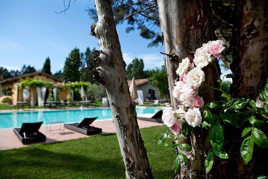 Le Dimore Di San Crispino: Scorcio dalla piscina del Garden Resort & SPA de Le Dimore di San Crispino