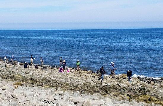Lanai at the Cove: 20170708_103128_large.jpg
