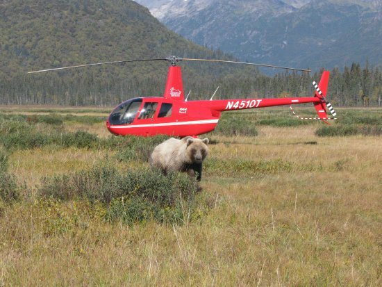 Alaska Ultimate Safaris