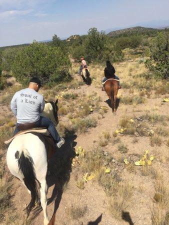 M Diamond Ranch: photo5.jpg