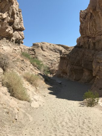 Borrego Springs, CA: Canyon Hike