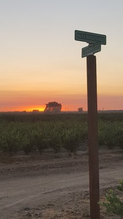 Porterville, CA: sunset at field