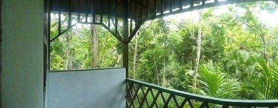 Sepilok Jungle Resort Εικόνα