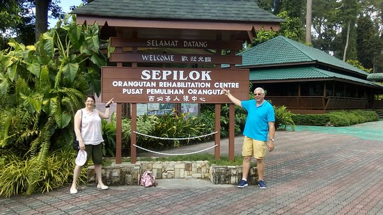 Sepilok Jungle Resort: 5 minutes away