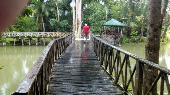 Sepilok Jungle Resort: Bridges connect rooms to simple hotel restaurant/cafe