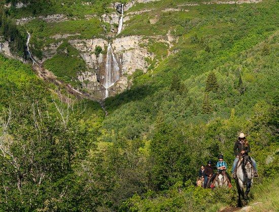 Midway, UT: Horseback ride to see the amazing Stewart Falls at Sundance Mountain Resort