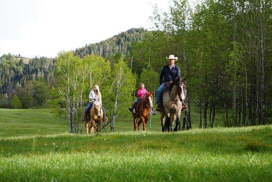 Midway, UT : Horseback ride through Elk Meadows at Sundance Stable