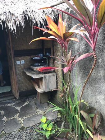 Flower Bud Bungalows Balangan: photo1.jpg