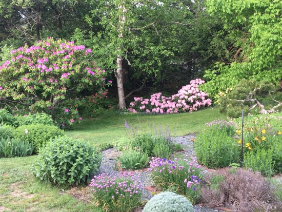Prospect Harbor, ME: Part of the garden out front