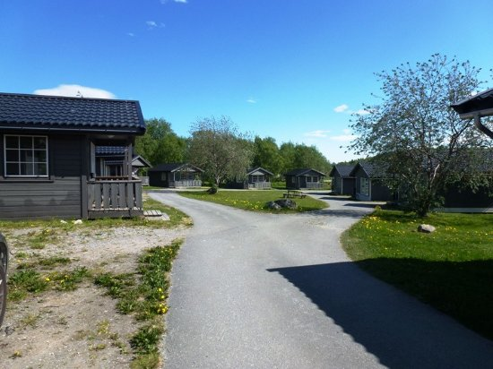 Pluscamp Saltstraumen