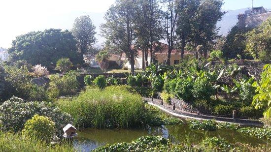 Jardín Acuático: 20170704_104843_large.jpg