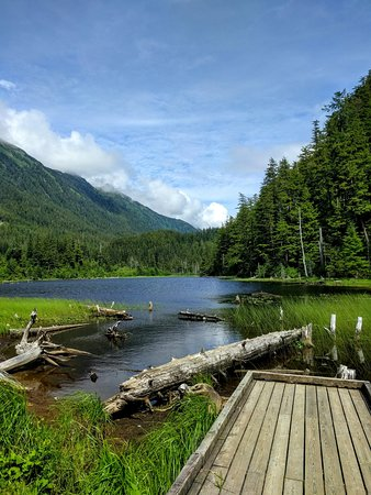 Island Fever Diving and Adventures : Thimbleberry Lake, Sitka.