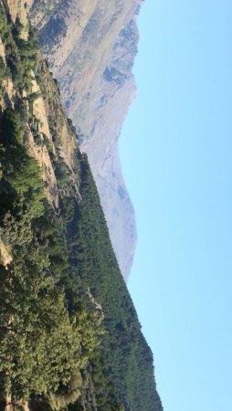 Finca los Llanos: photo0.jpg