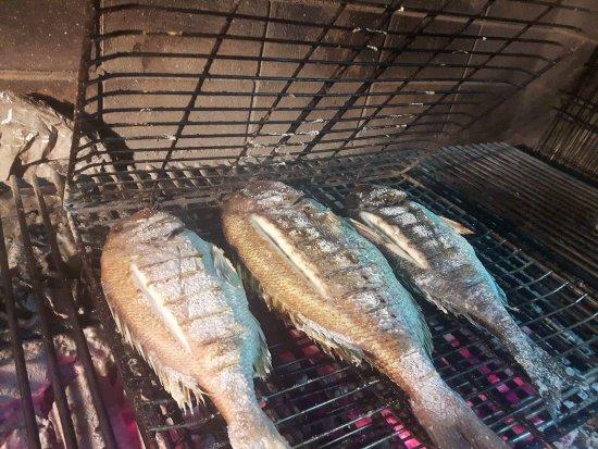 Agios Georgios, Greece: Fresh fish grilled!!!!