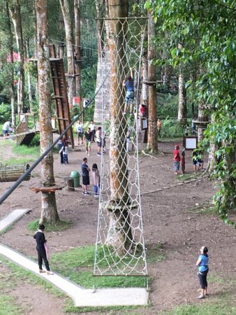 Bedugul, Indonesia: Easier courses conclude with ziplines into a cargo net