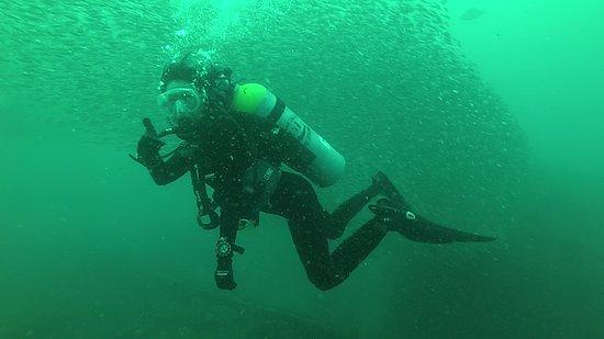 Olympus Dive Center
