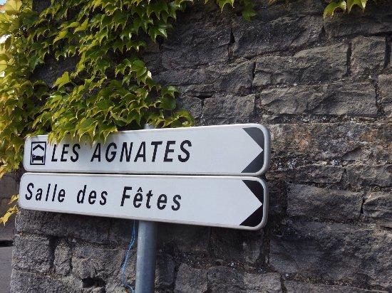 Les Agnates : photo7.jpg