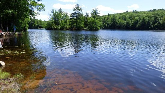 Gardner, MA: water is clear and area is peaceful
