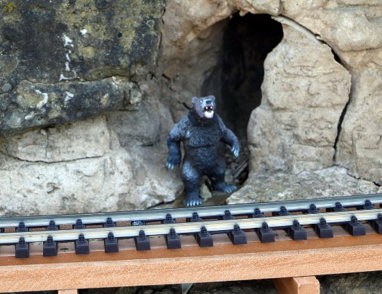 Valparaiso, IN: Bear in a cave