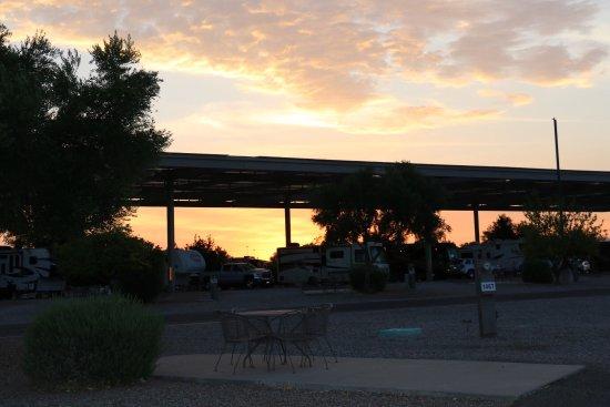 Tucson/Lazydays KOA: photo2.jpg