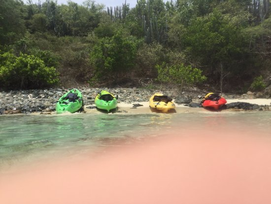 Coral Bay, St. John: Our beached kayaks