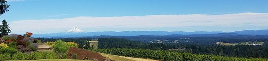 West Linn, Oregón: Resized_20170709_155125_large.jpg