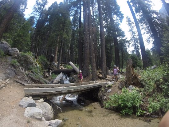"Three Rivers, CA: Another ""Hobbit""-like creek crossing, returning back down the trail to Lodgepole."