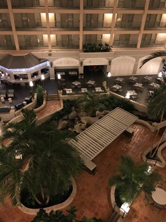 Sheraton Suites Cypress Creek Ft. Lauderdale: Clean, nice and great staff. Excellent costumer services. Cleanliness, responsible, helpful. Hig