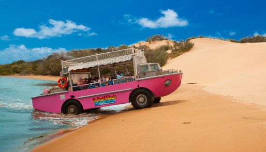 Seventeen Seventy, Australia: We love our go-anywhere amphibious LARCs!!