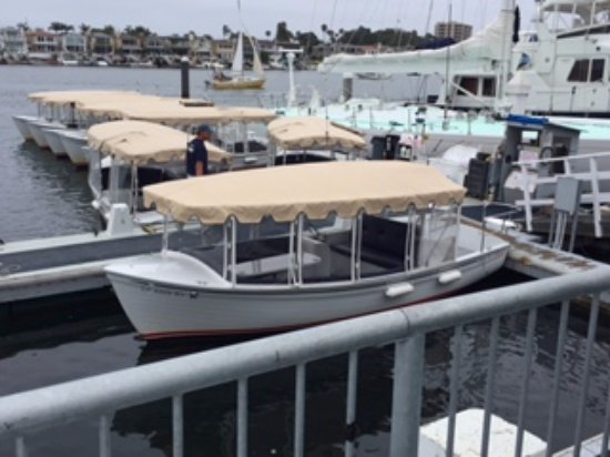 Picture Of Duffy Electric Boat Als