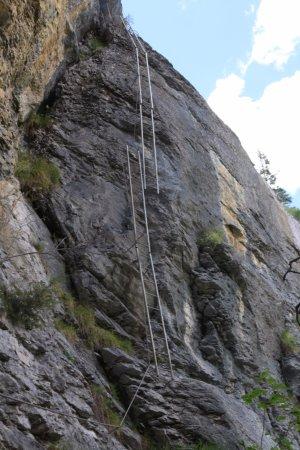 Via Ferrata: Ladders