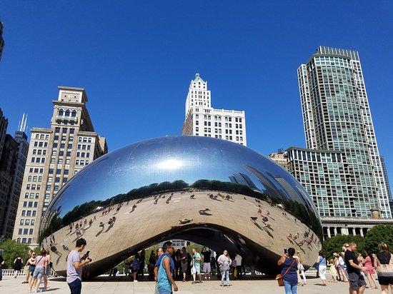 Chicago Bus Tours Tripadvisor
