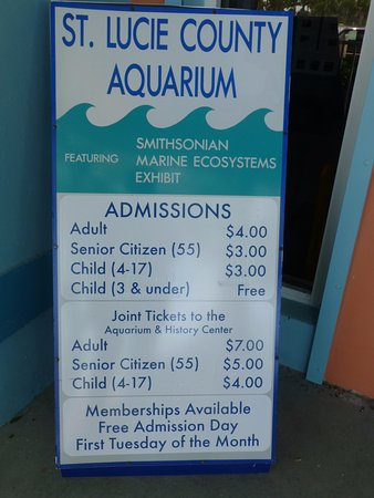 St. Lucie County Aquarium - Smithsonian Marine Ecosystems Exhibit: St Lucie County Aquarium