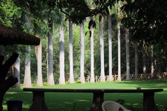 Aaram Baagh Udaipur Photo