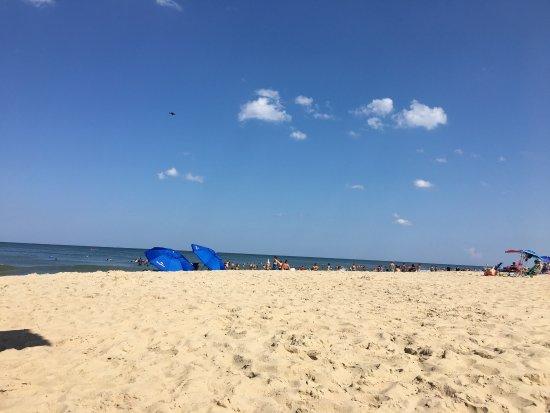 Sandbridge Beach: photo0.jpg
