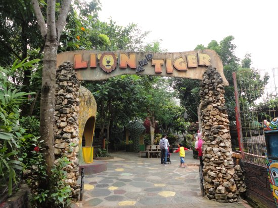 rusa koleksi - Picture of Maharani Zoo & Caves, Lamongan