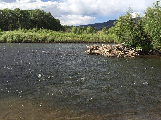 South Fork, Colorado: photo3.jpg