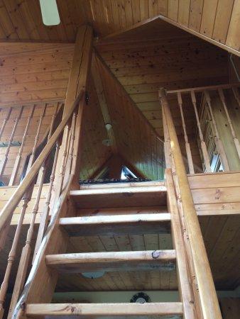 Alaska Adventure Cabins: photo7.jpg