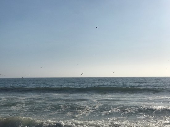 Half Moon Bay State Beach: photo2.jpg