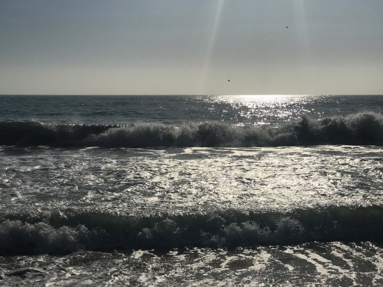 Half Moon Bay State Beach: photo3.jpg