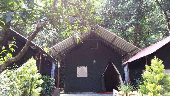 Royale Rainbow Resort Rishikesh Lodge Reviews Photos
