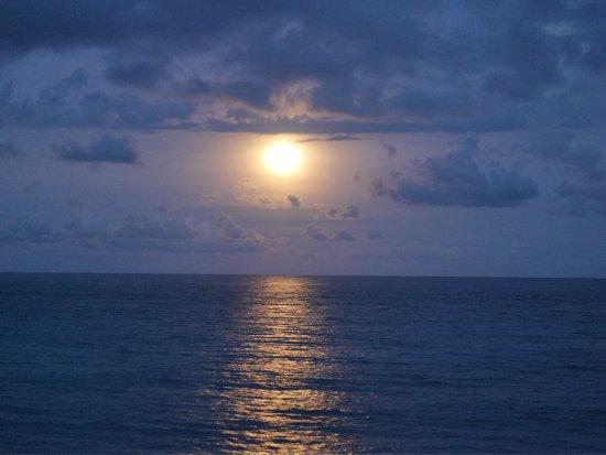 Nanbin Park: 滿月的月亮海
