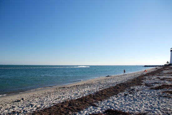 Bill Baggs Cape Florida State Park : Late afternoon in Cape FL