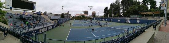University of California, Berkeley: Tennis Berkeley