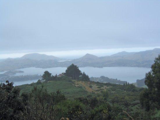 Otago Peninsula: 奧塔哥半島