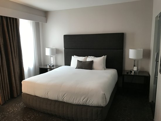 Kimpton Carlyle Hotel : the room - bed