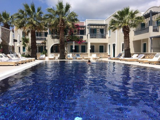 Rose Bay Hotel Photo