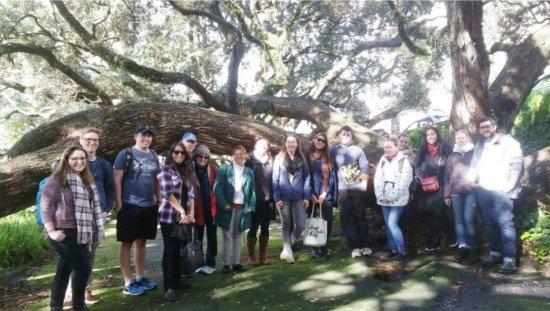 Auckland Free Walking Tours: 2017-07-10 19_large.jpg