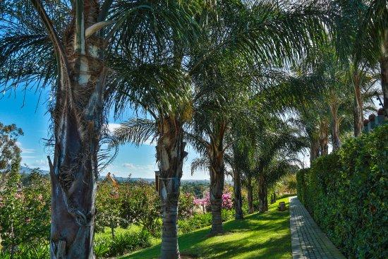Landscape - Picture of Monte Video Guest House, Wellington - Tripadvisor